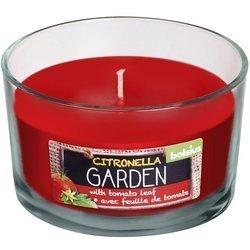 Bolsius Citronella Garden scented candle in glass 62/106 mm - Citronella Tomato Leaf